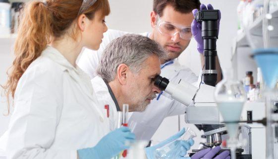 """Arbeitsvertragsbefristung bei """"wissenschaftlichem Personal"""