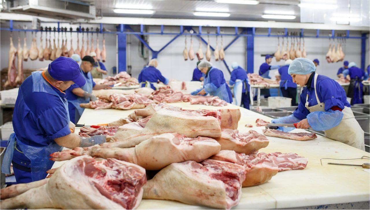 Werkverträge und Leiharbeit in der Fleischindustrie