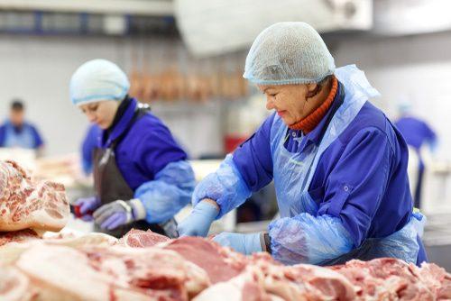 Leiharbeterinnen beim zerlegen von Fleisch